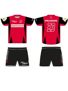Unihockey Astros Rotkreuz Raiffeisen