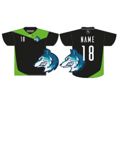 Unihockey Shirt SBB